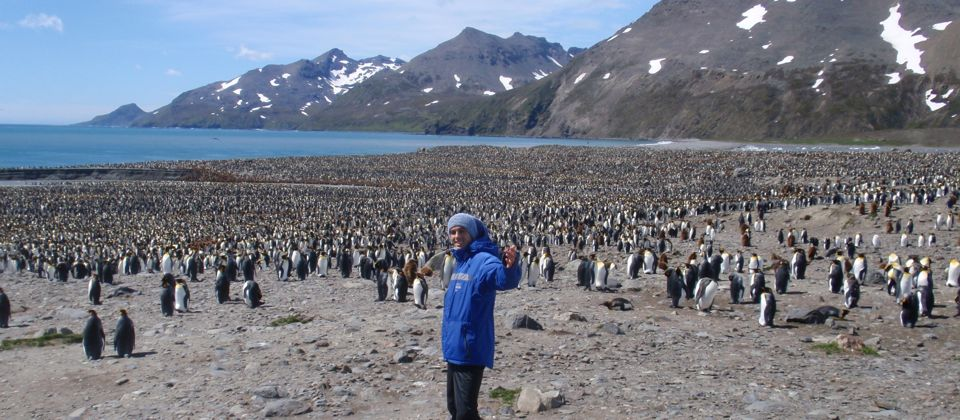 Experiencing 200,000 King Penguins on way to Antarctica, South Georgia Islands, 28 yrs old
